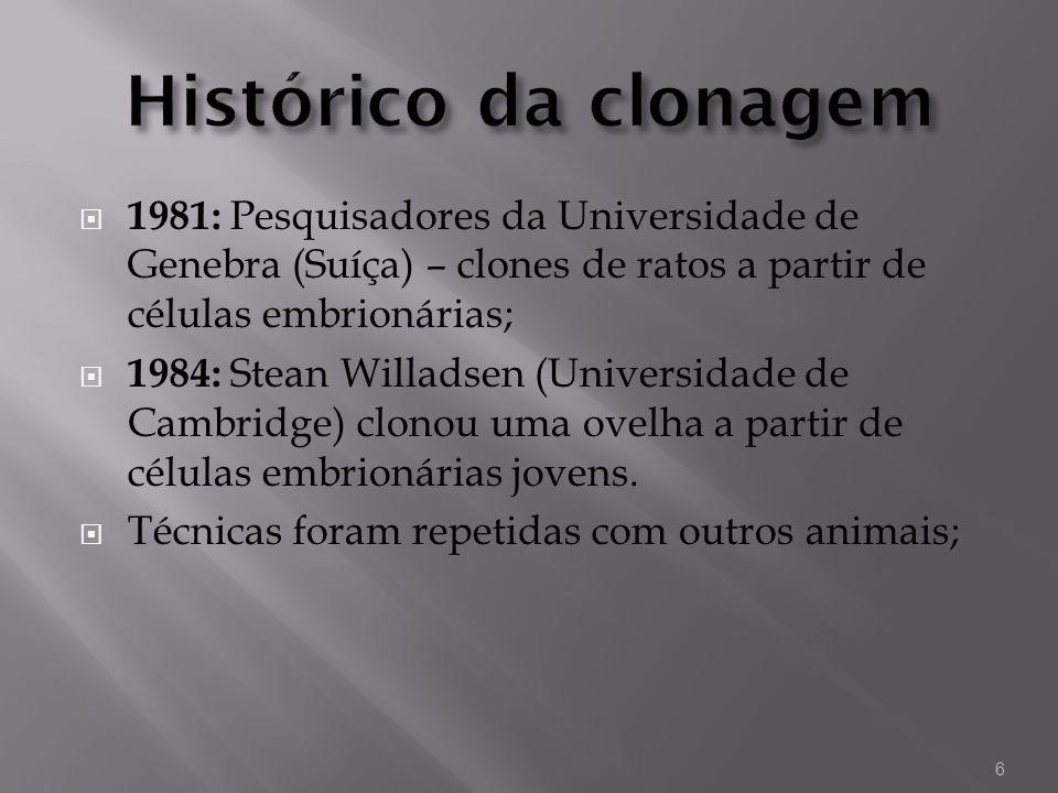 Histórico da clonagem 1981: Pesquisadores da Universidade de Genebra (Suíça) – clones de ratos a partir de células embrionárias;