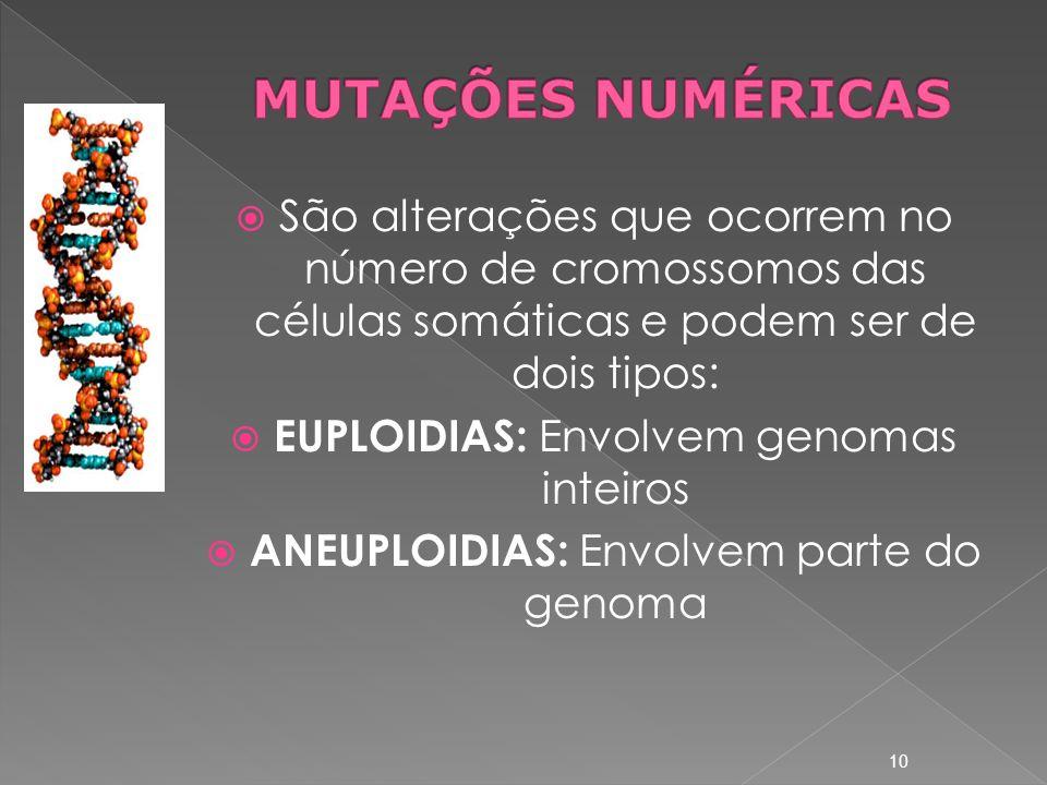 MUTAÇÕES NUMÉRICAS São alterações que ocorrem no número de cromossomos das células somáticas e podem ser de dois tipos: