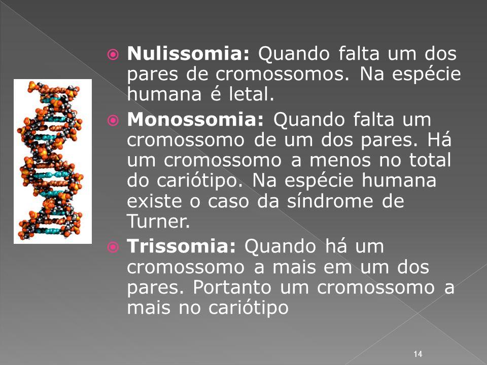 Nulissomia: Quando falta um dos pares de cromossomos
