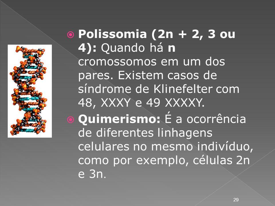 Polissomia (2n + 2, 3 ou 4): Quando há n cromossomos em um dos pares