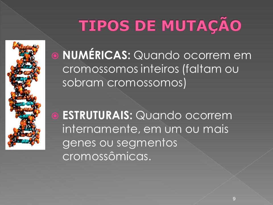 TIPOS DE MUTAÇÃO NUMÉRICAS: Quando ocorrem em cromossomos inteiros (faltam ou sobram cromossomos)