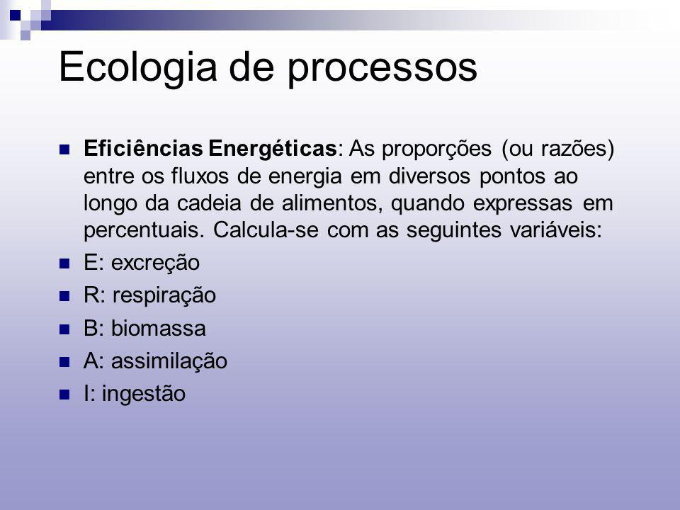 Ecologia de processos