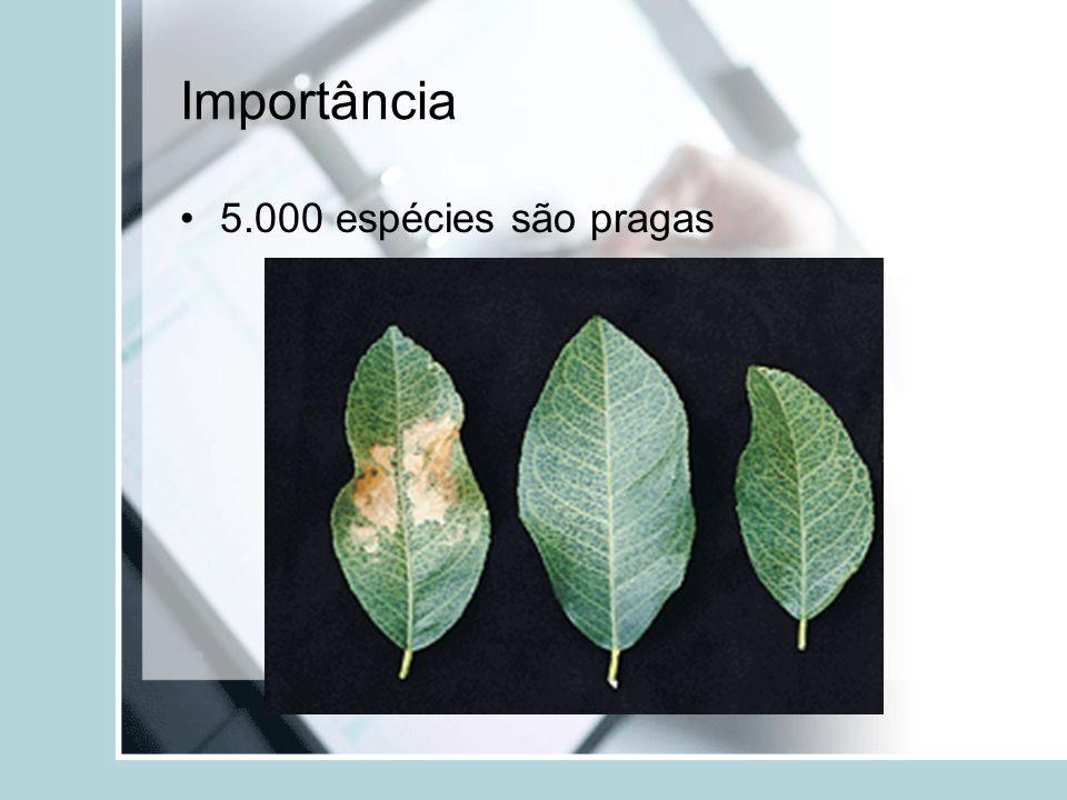 Importância 5.000 espécies são pragas