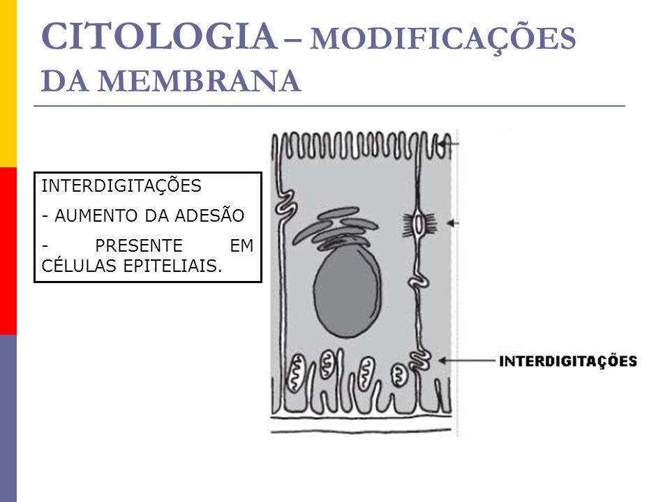 CITOLOGIA – MODIFICAÇÕES DA MEMBRANA
