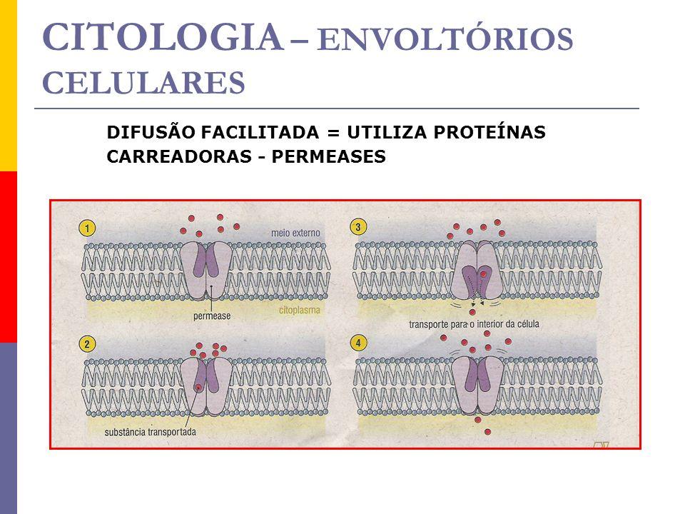 CITOLOGIA – ENVOLTÓRIOS CELULARES
