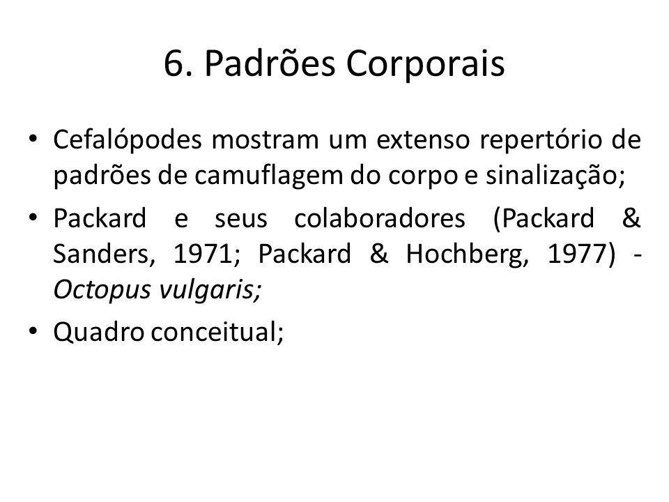 6. Padrões Corporais Cefalópodes mostram um extenso repertório de padrões de camuflagem do corpo e sinalização;