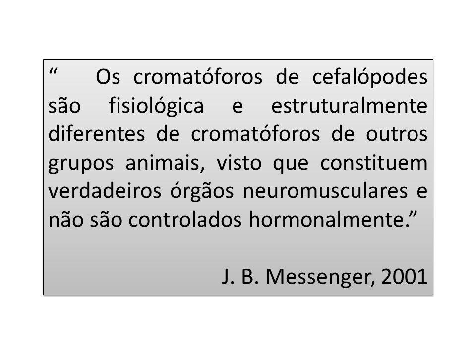Os cromatóforos de cefalópodes são fisiológica e estruturalmente diferentes de cromatóforos de outros grupos animais, visto que constituem verdadeiros órgãos neuromusculares e não são controlados hormonalmente.