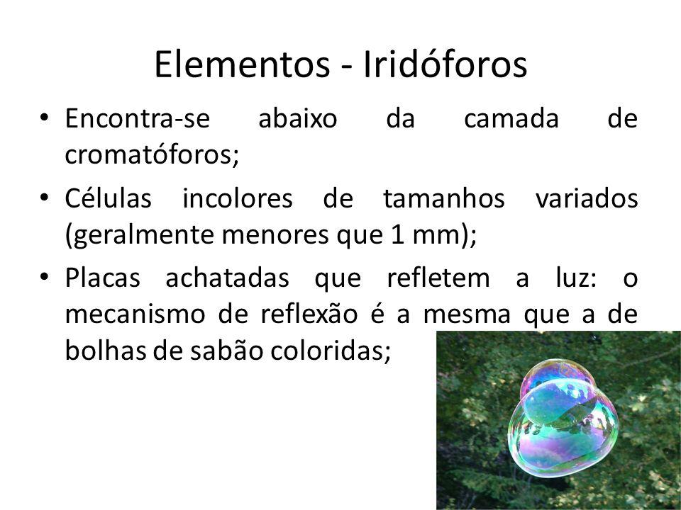 Elementos - Iridóforos