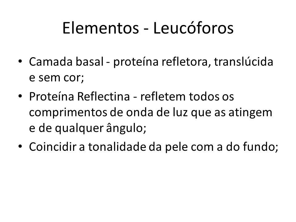 Elementos - Leucóforos