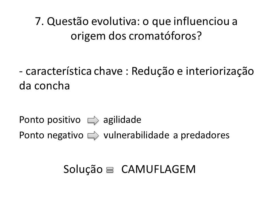 7. Questão evolutiva: o que influenciou a origem dos cromatóforos