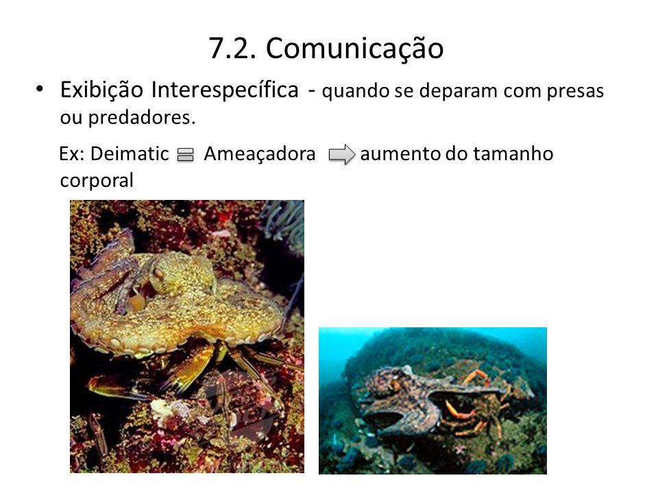 7.2. Comunicação Exibição Interespecífica - quando se deparam com presas ou predadores.