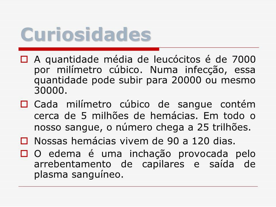 Curiosidades A quantidade média de leucócitos é de 7000 por milímetro cúbico. Numa infecção, essa quantidade pode subir para 20000 ou mesmo 30000.