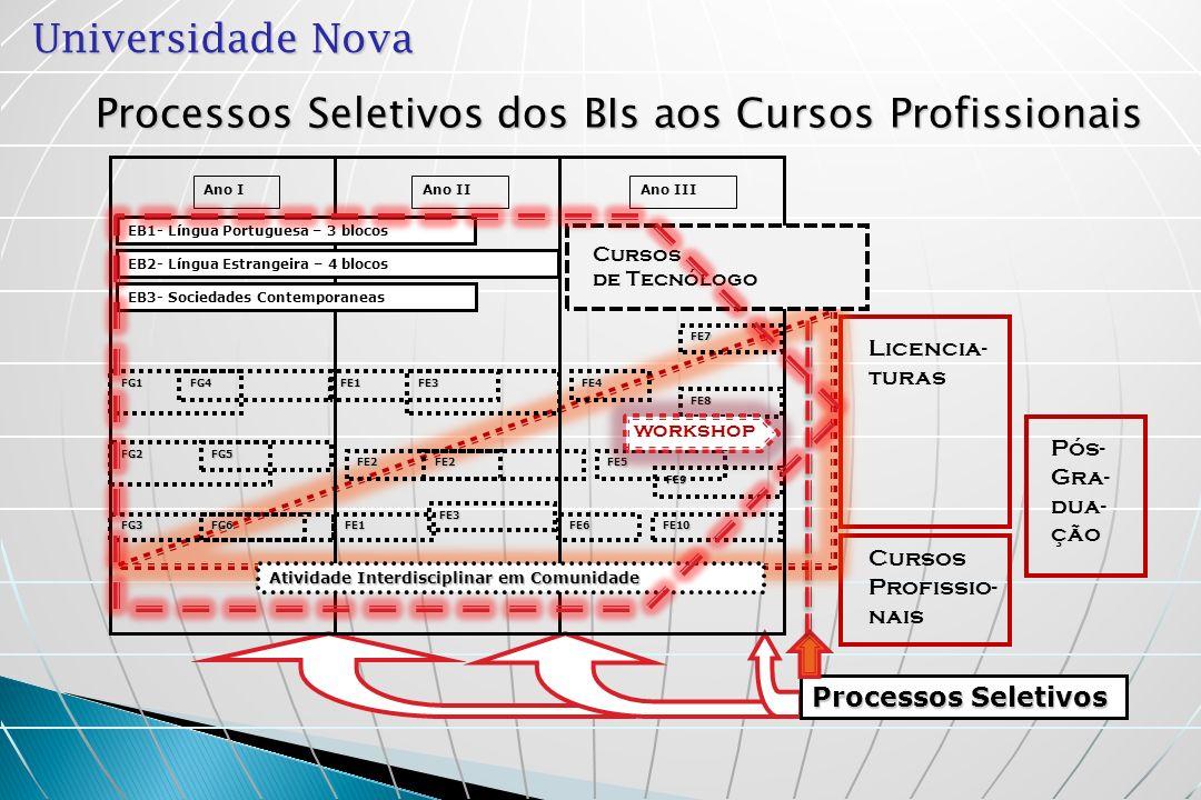 Processos Seletivos dos BIs aos Cursos Profissionais