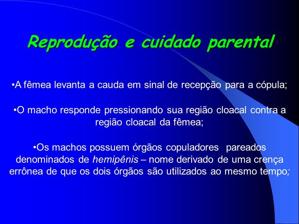 Reprodução e cuidado parental