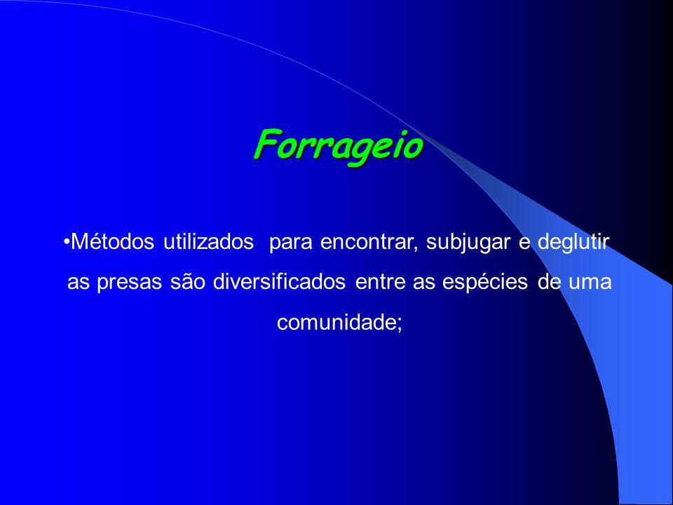 Forrageio Métodos utilizados para encontrar, subjugar e deglutir