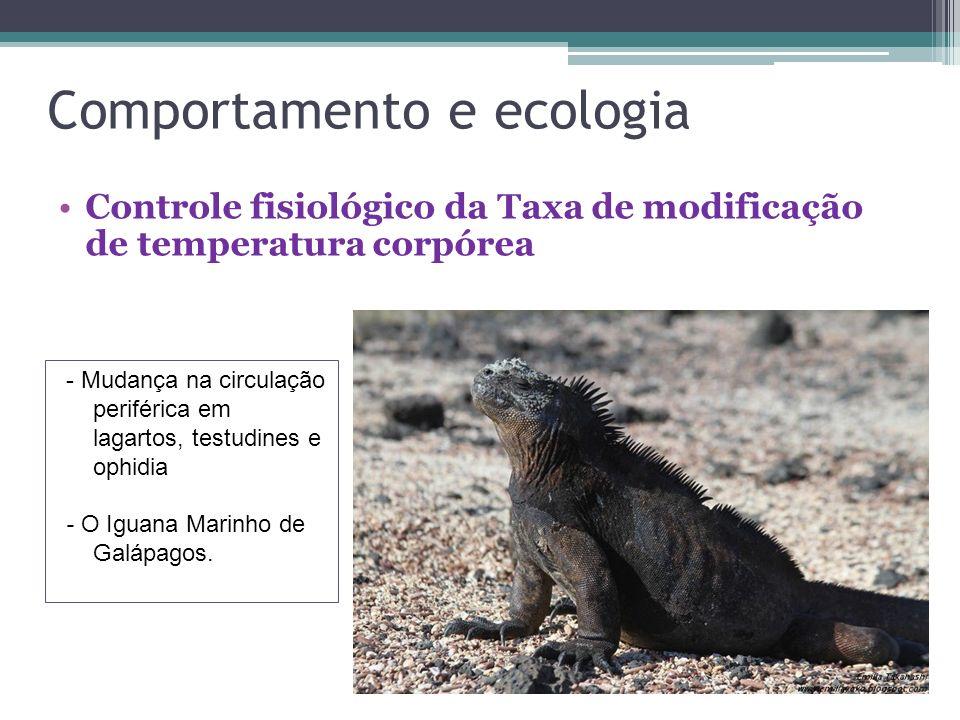 Comportamento e ecologia