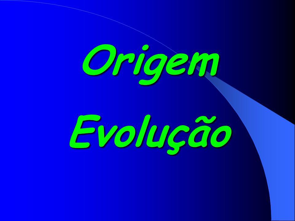 Origem Evolução