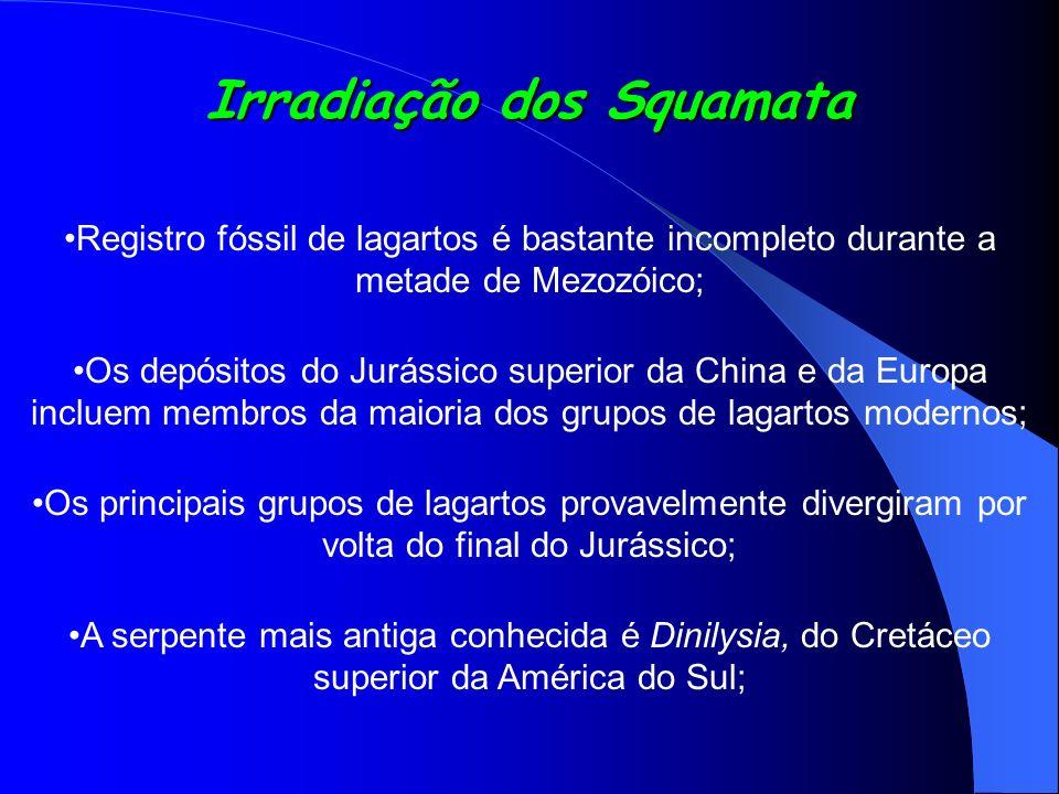 Irradiação dos Squamata