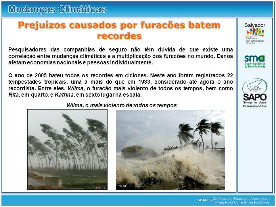 Prejuízos causados por furacões