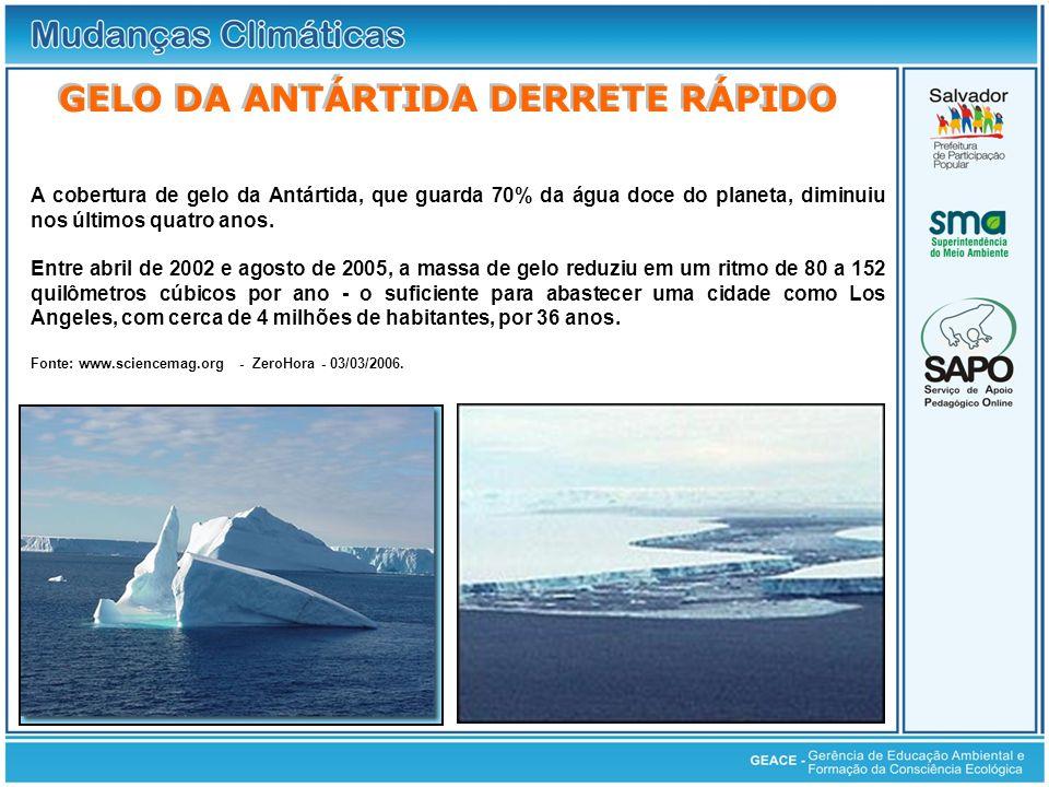 Gelo da Antártida Derrete Rápido