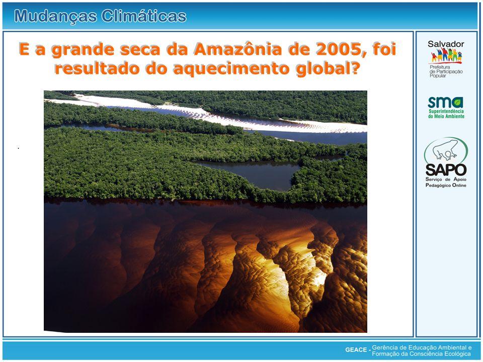 Seca da Amazônia E a grande seca da Amazônia de 2005, foi resultado do aquecimento global .