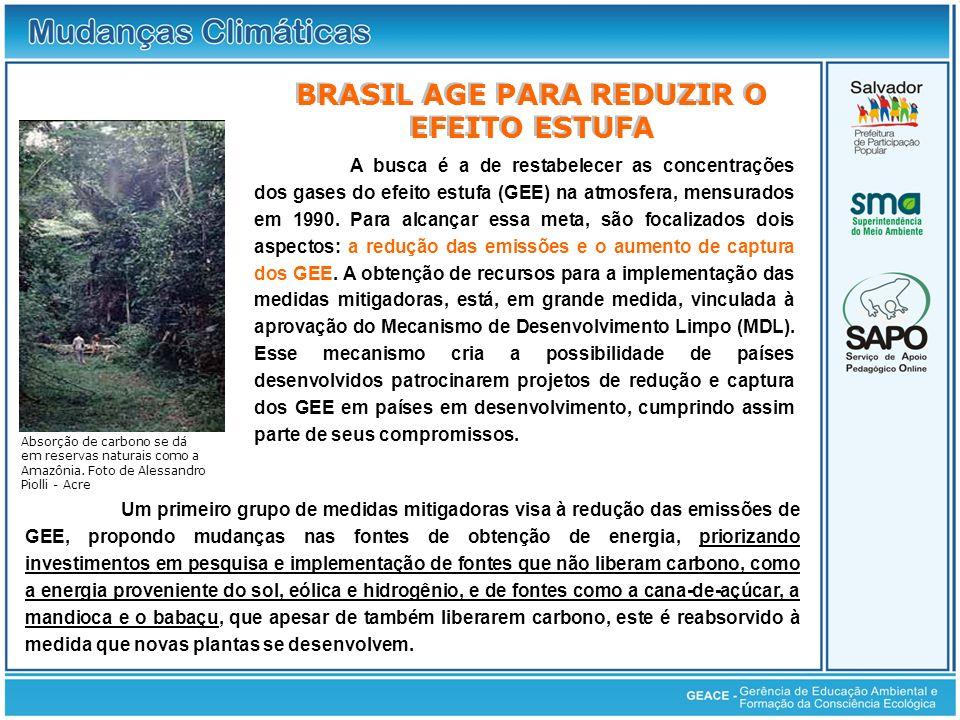 Brasil Age para Reduzir o Efeito Estufa