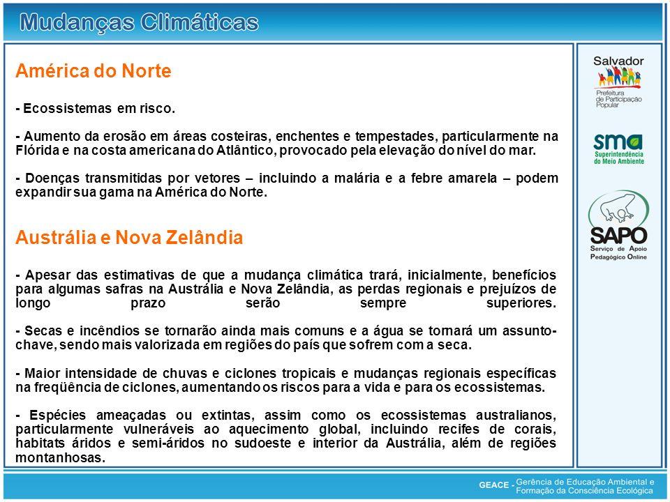 América do Norte; Austrália e Nova Zelândia