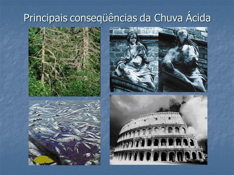 Principais conseqüências da Chuva Ácida