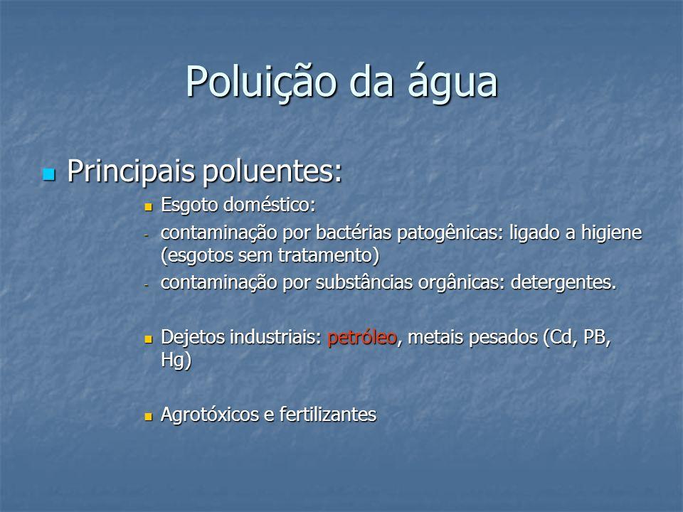 Poluição da água Principais poluentes: Esgoto doméstico: