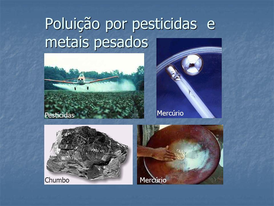 Poluição por pesticidas e metais pesados