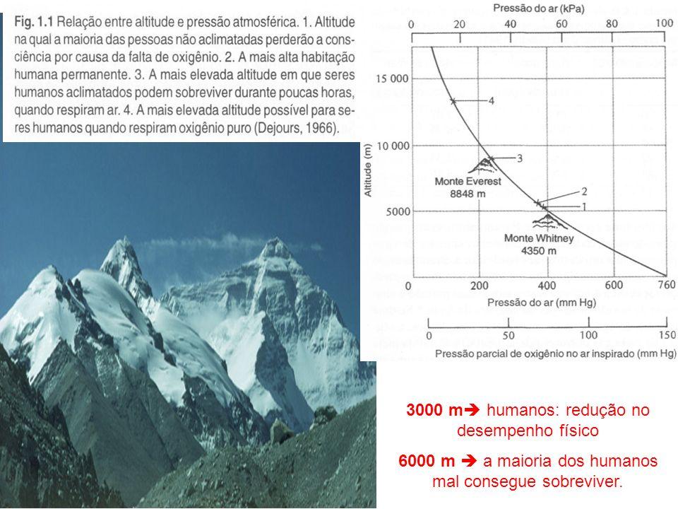 3000 m humanos: redução no desempenho físico