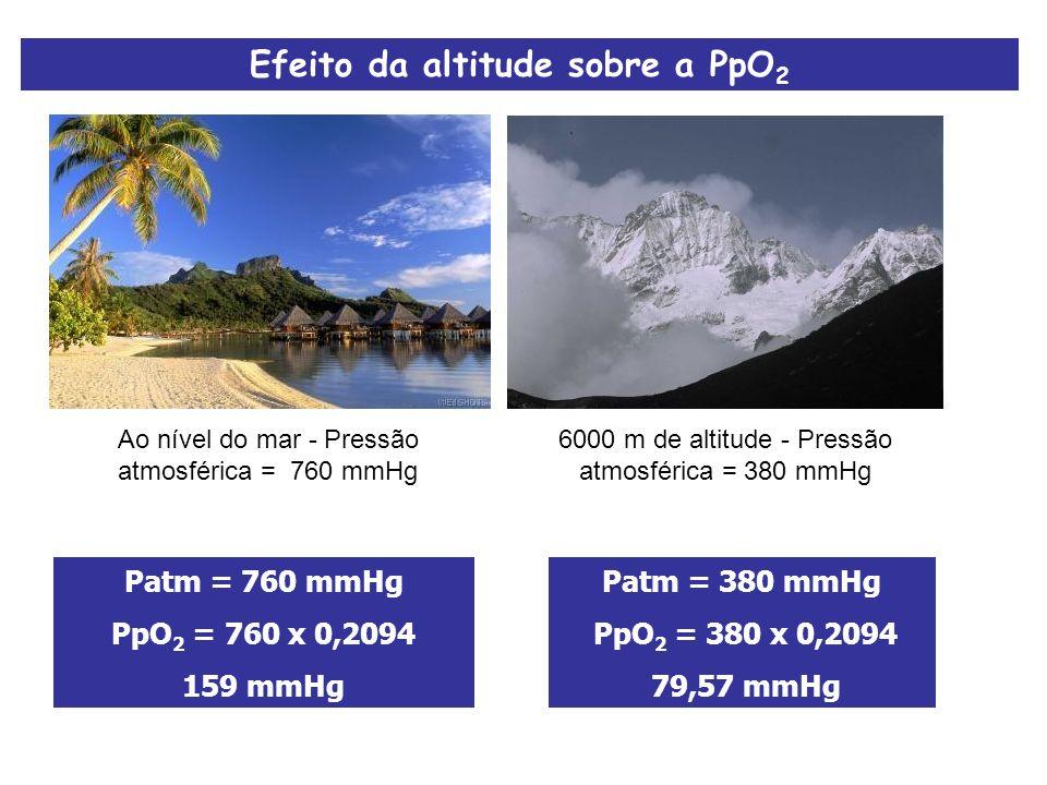Efeito da altitude sobre a PpO2