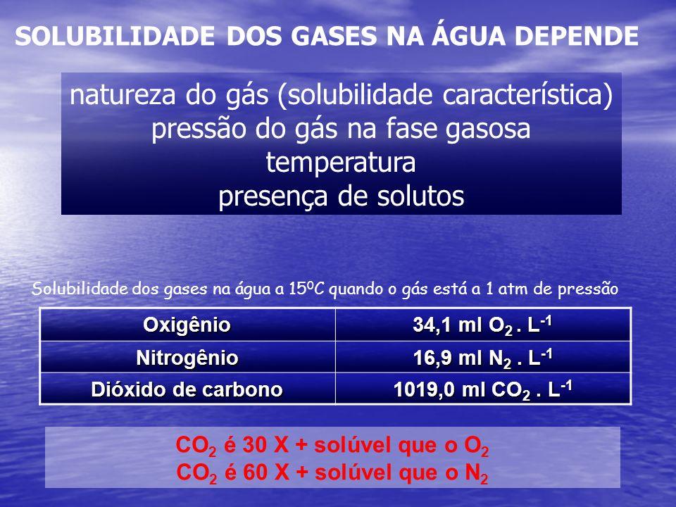 natureza do gás (solubilidade característica)