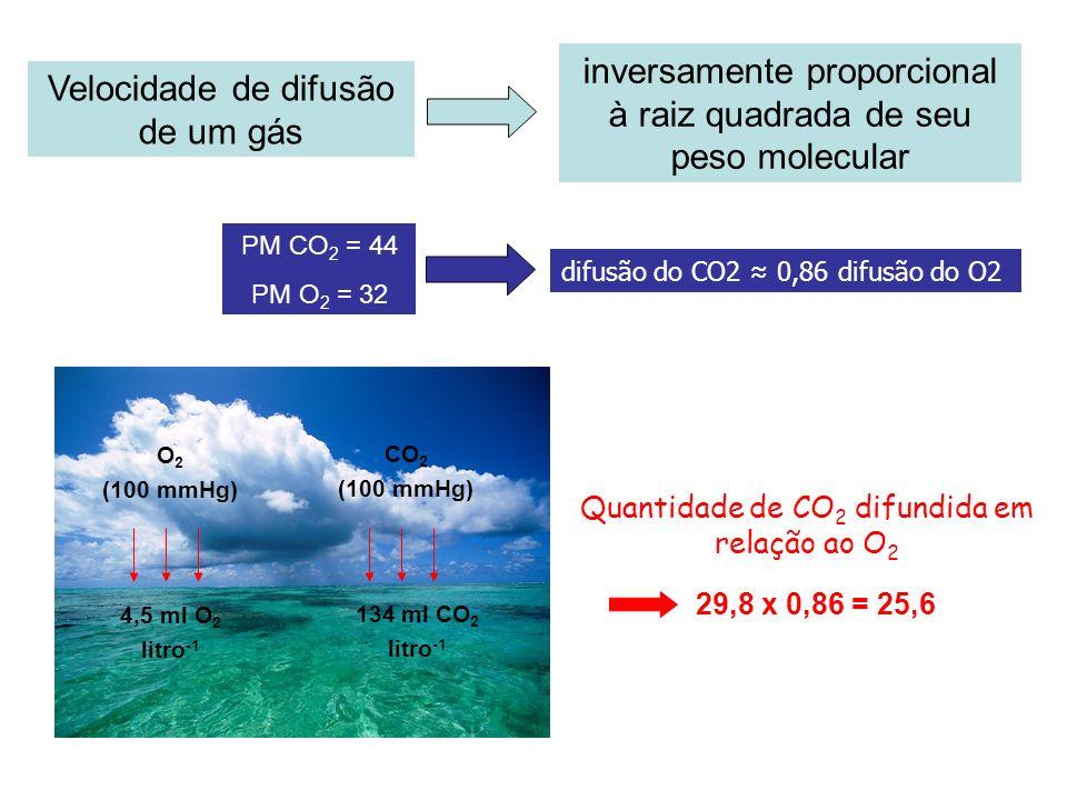 inversamente proporcional à raiz quadrada de seu peso molecular