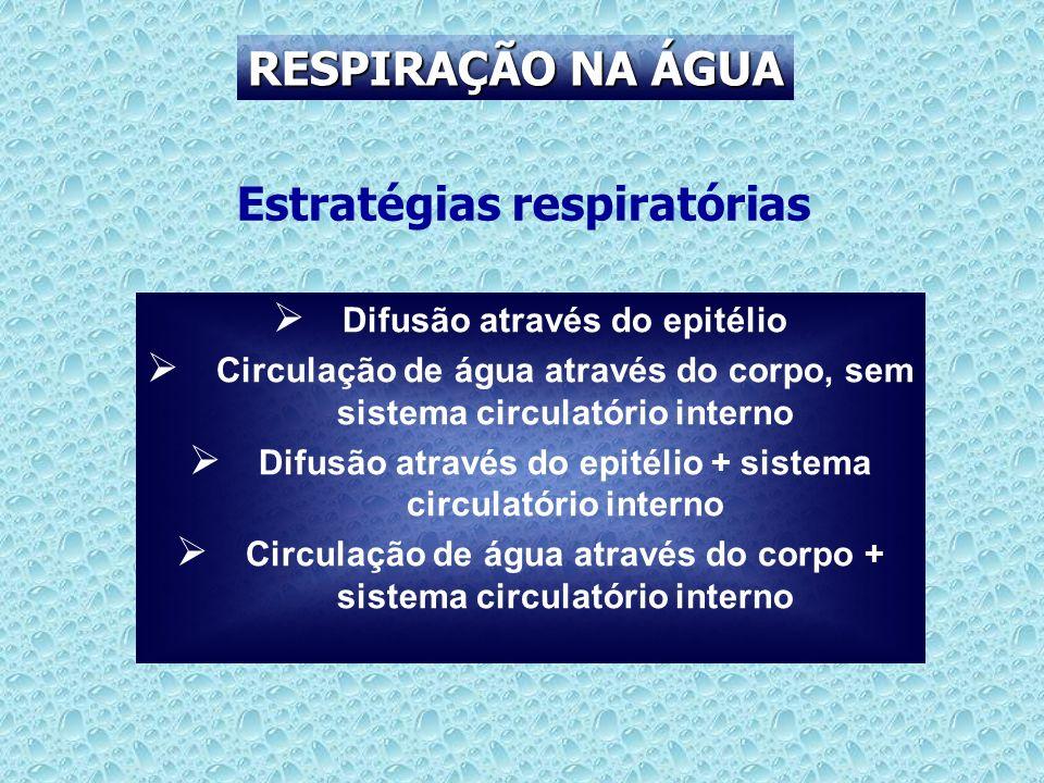 Estratégias respiratórias