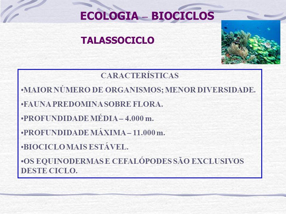 ECOLOGIA – BIOCICLOS TALASSOCICLO CARACTERÍSTICAS