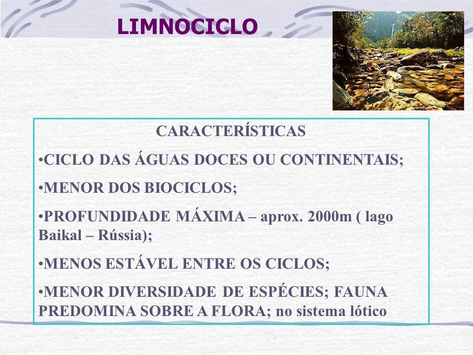LIMNOCICLO CARACTERÍSTICAS CICLO DAS ÁGUAS DOCES OU CONTINENTAIS;