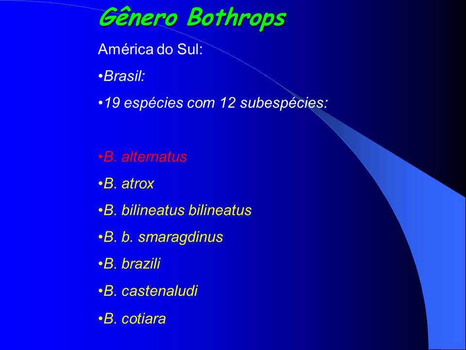 Gênero Bothrops América do Sul: Brasil: