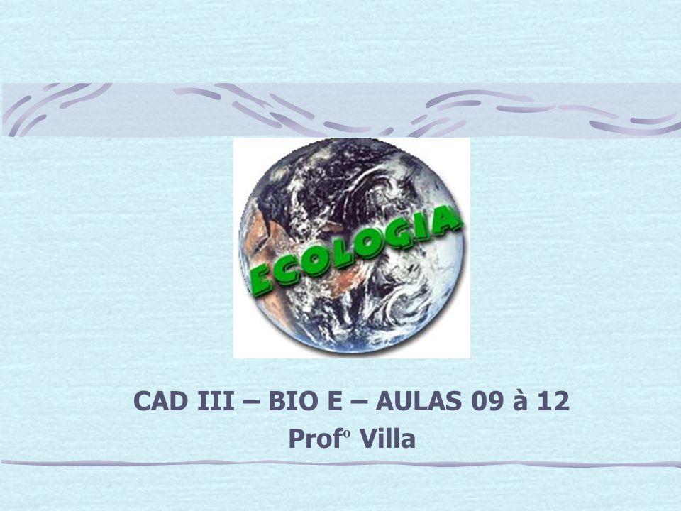 CAD III – BIO E – AULAS 09 à 12 Profº Villa