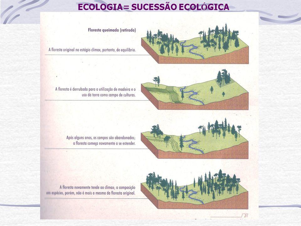 ECOLOGIA= SUCESSÃO ECOLÓGICA