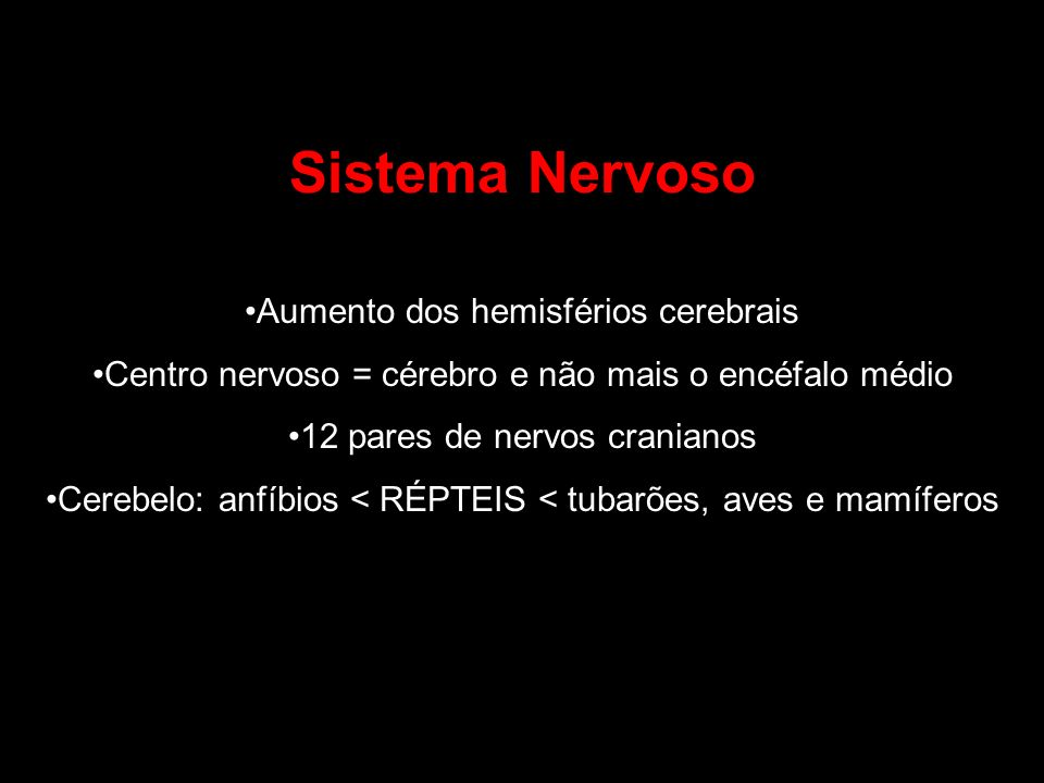 Sistema Nervoso Aumento dos hemisférios cerebrais