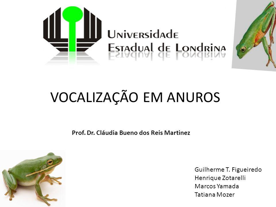 VOCALIZAÇÃO EM ANUROS Prof. Dr. Cláudia Bueno dos Reis Martinez