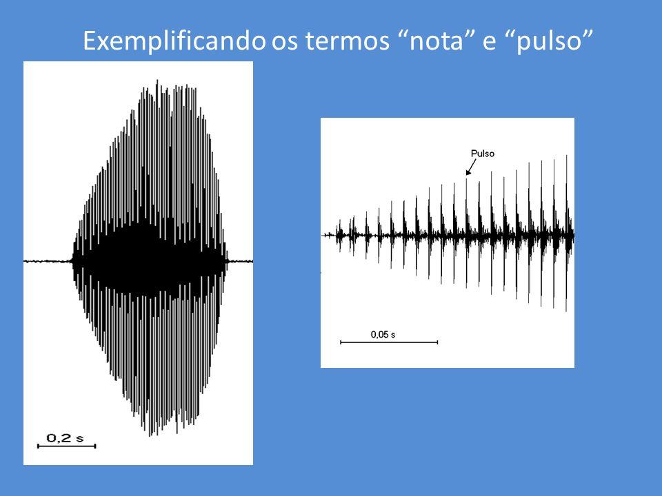 Exemplificando os termos nota e pulso