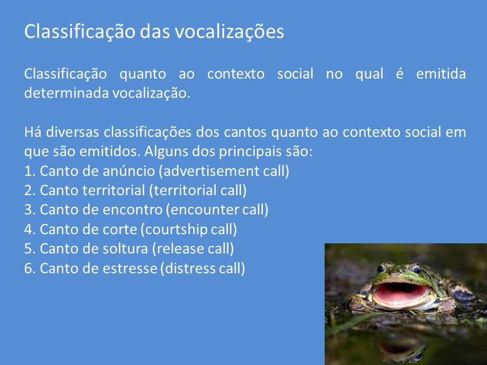 Classificação das vocalizações
