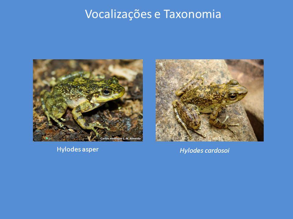 Vocalizações e Taxonomia