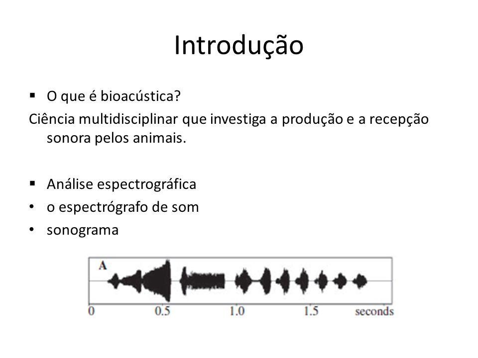Introdução O que é bioacústica