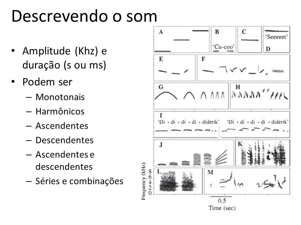 Descrevendo o som Amplitude (Khz) e duração (s ou ms) Podem ser
