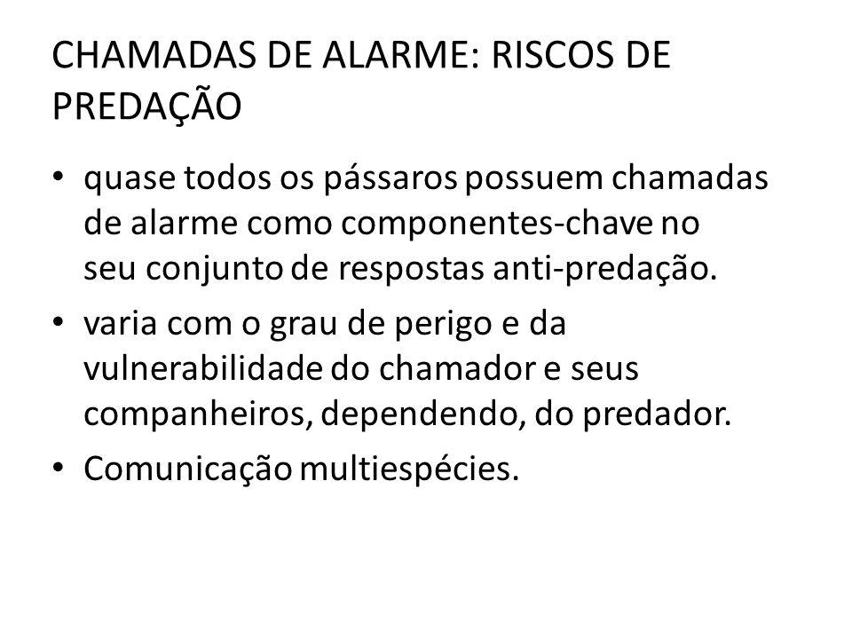 CHAMADAS DE ALARME: RISCOS DE PREDAÇÃO