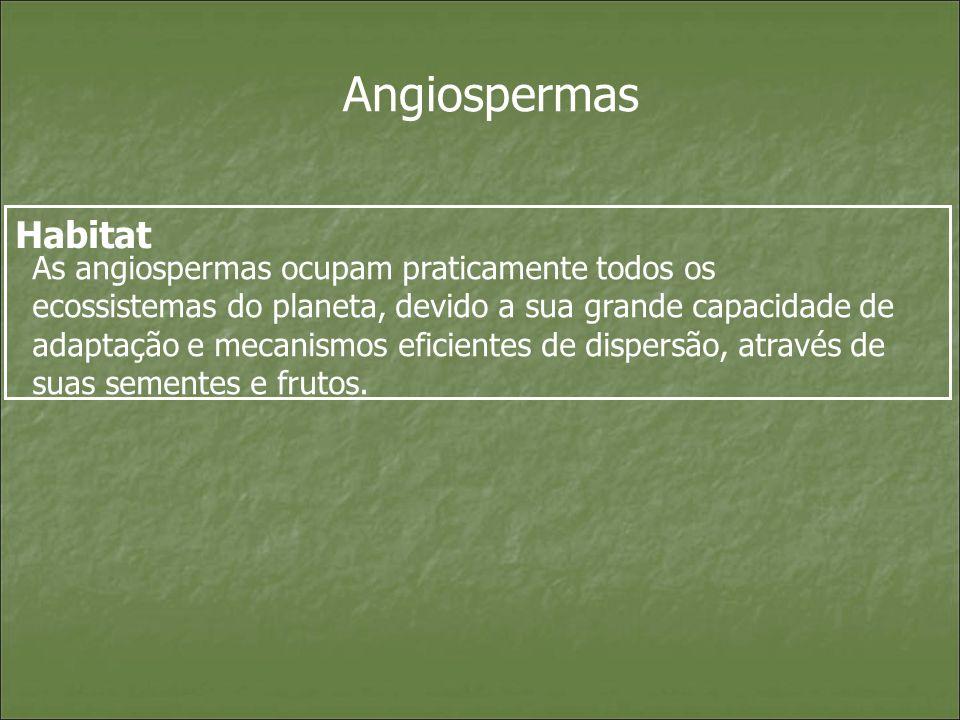 AngiospermasHabitat.
