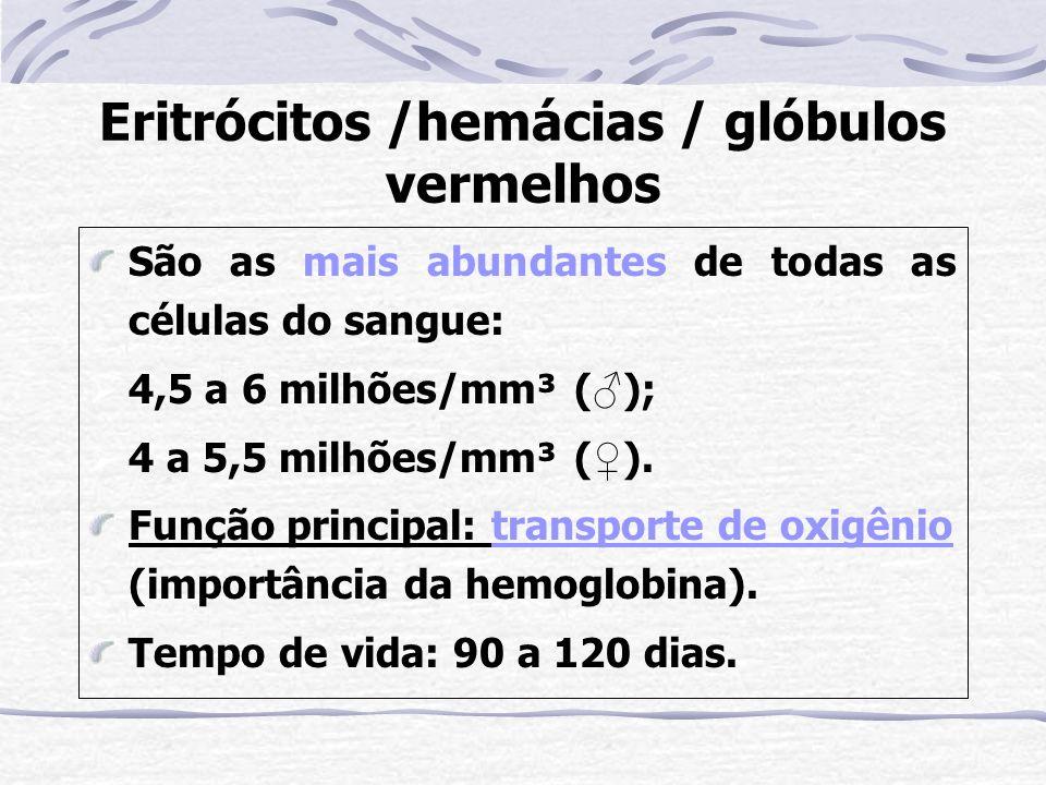 Eritrócitos /hemácias / glóbulos vermelhos